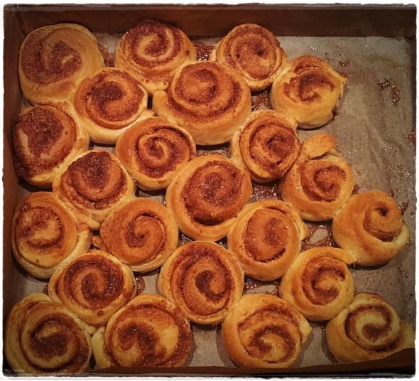Zimtschnecken-cinnamon-rolls